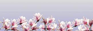 Lechner Arbeitsplatte - Lechner Glas Motive - Artikel Nr. M16 - Blossom