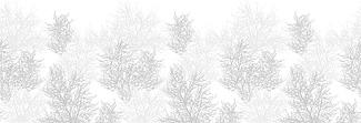 Lechner Arbeitsplatte - Lechner Glas Motive - Artikel Nr. M63 - Treetop